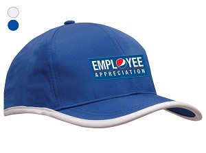 Sports Ripstop with Terry Cloth Lining Cap Employee Appreciation